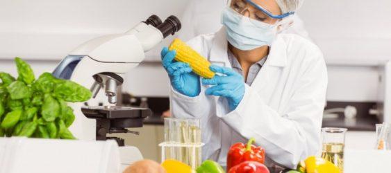 CONSULENZA HACCP - Res Nova Latina
